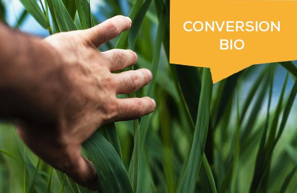 conversions bio 2020