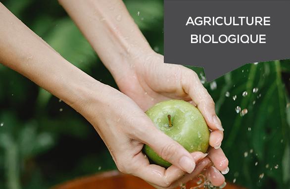 aide agriculture biologique