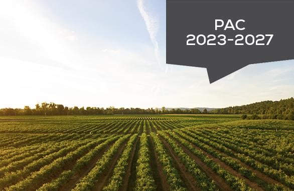 PAC 2023-2027